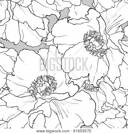 Beautiful floral seamless pattern. Peony illustration