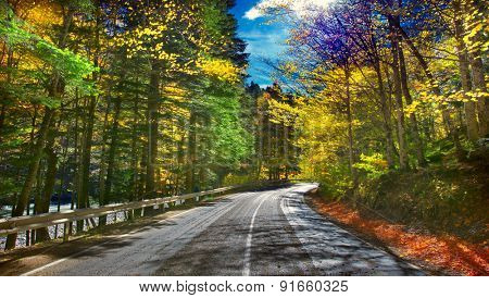 Beautiful scenic empty road in the fall
