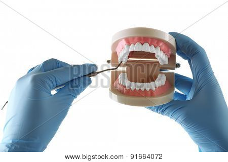 White fake teeth in hand of dentist, isolated on white
