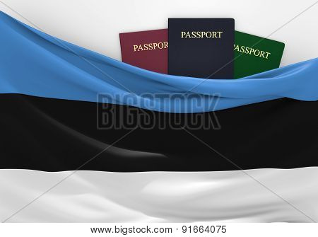 Travel and tourism in Estonia, with assorted passports