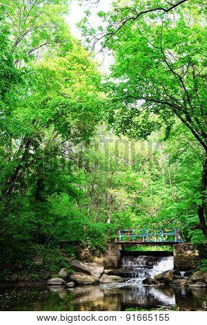 Wooden bridge over river in beautiful park