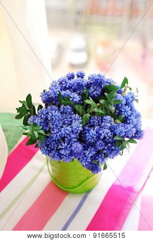Beautiful bouquet of muscari - hyacinth in metal bucket on windowsill