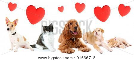 Cats and dogs with red hearts isolated on white