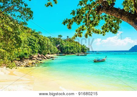 Paradise beach with golden sand and exotic trees