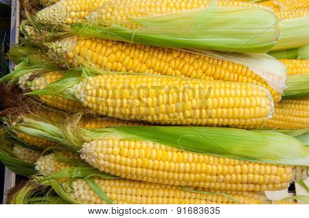 Corn Is On Sale At The Bazaar