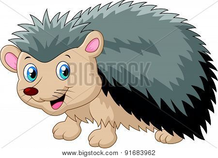 Hedgehog cartoon was looking to the side