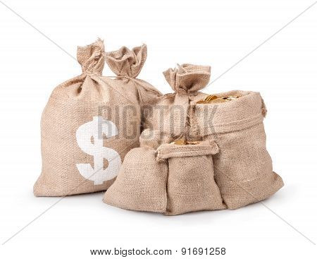 Money Coins In Bag Isolated On White