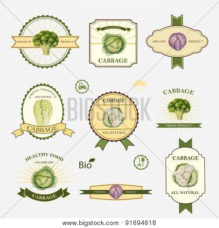 Cabbage, Set Of Label Design
