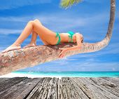 picture of caribbean  - Girl on palm on caribbean beach - JPG
