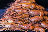 stock photo of crawfish  - Photo of background with red boiled crawfishes - JPG