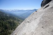 pic of sequoia-trees  - Landscape in Sequoia National park in California USA - JPG