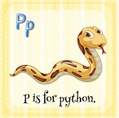 picture of python  - Flashcard letter P is for python - JPG