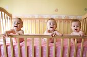 image of triplets  - three little baby girls in crib triplet babies - JPG