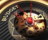 pic of budget  - Budget on Black - JPG