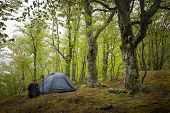 pic of tent  - Camping equipment - JPG