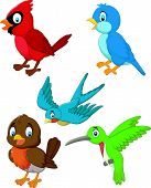 stock photo of cardinal-bird  - Vector illustration of Cartoon birds collection set - JPG