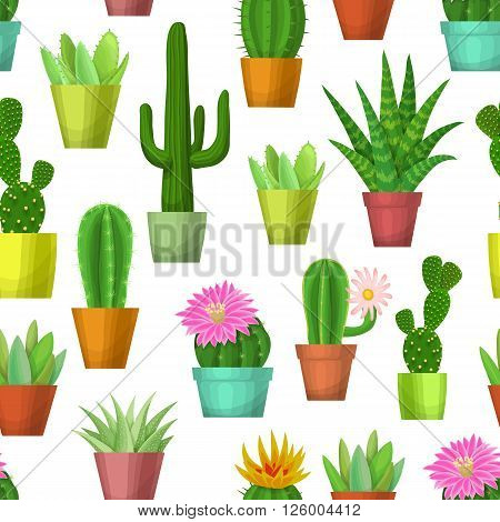 Cactus and succulent seamless pattern. Blossom cacti and succulents in pots on white background. Vector illustration with house plants.