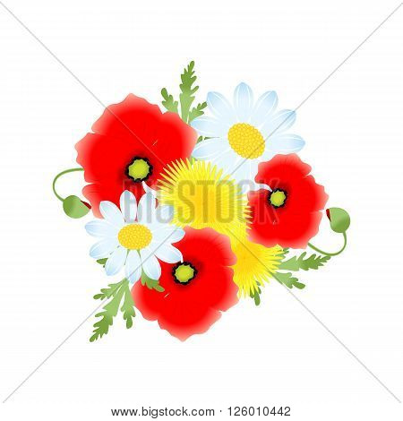 beautiful and bright illustration with flowers - poppies dandelion chamomile.