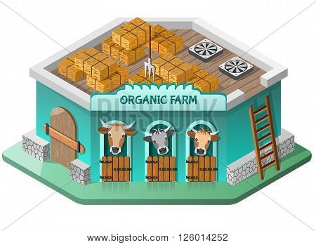 Organic farm with cows and haystacs on the roof. Isometric view. Vector illustration