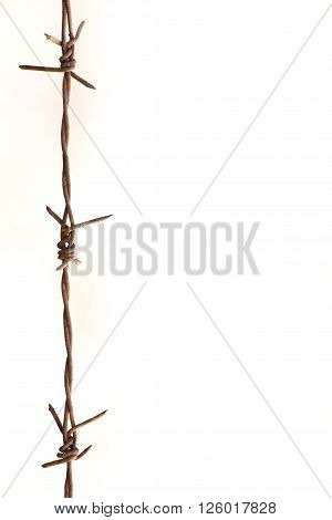 The iron barb wire on the white background