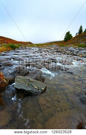 the shallow river with round stones and pebble in mountains (Altai)
