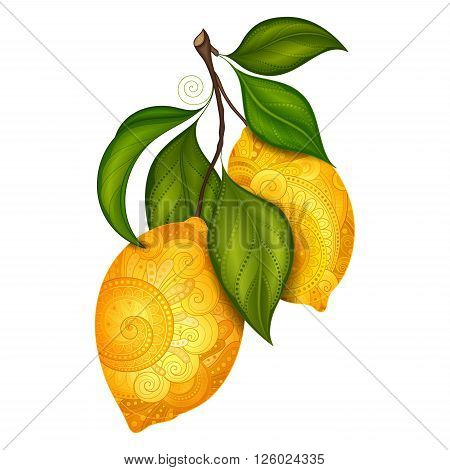 Vector Colored Contour Branch with Ornate Lemons and Decorative Leaves. Hand Drawn Decorative Citrus