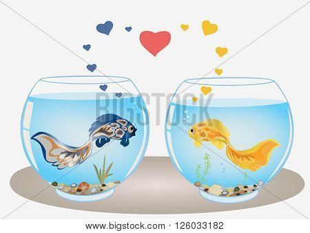 Fishes couple in love swiming in different aquariums look at each other. Romantic feeling concept. Vector.