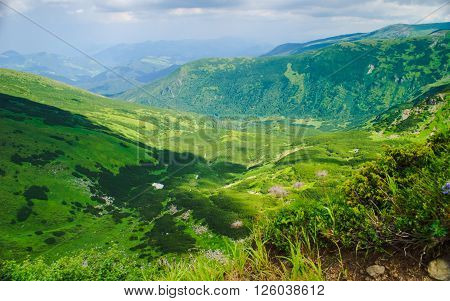 Glade and rocks high up in Carpathian mountains