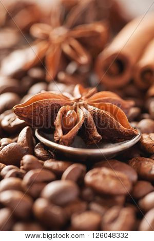 Coffee beans cinnamon and star anise closeup selective focus vertical
