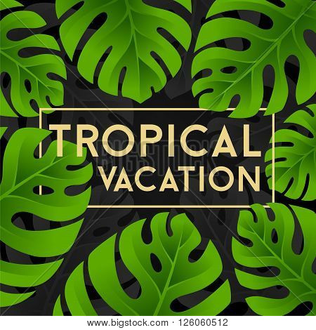 Tropical vacation card with monstera leaves. Jungle leaves background.
