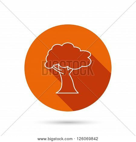 Oak tree icon. Forest wood sign. Nature environment symbol. Round orange web button with shadow.