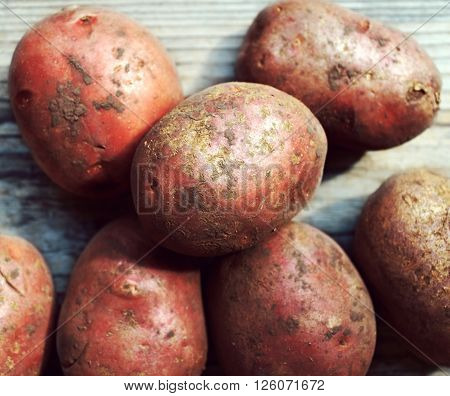 Dirty raw organic potatoes on wooden table