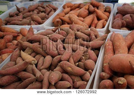 Containers of yams for sale at a farmer's market.