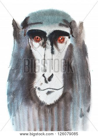 Watercolor portrait of grey furry monkey. Aquarelle drawing 2016 symbol.