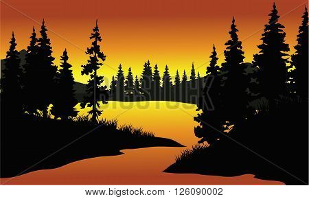 silhouette of spruce in river at the sunrise