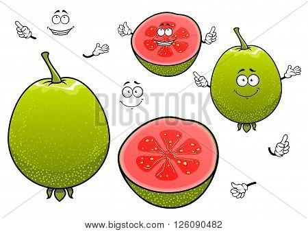Freshly harvested mexican green guava fruits cartoon characters with whole and halved tropical fruits with happy smiling faces. Nice in vegetarian menu, recipe book, kitchen accessories and healthy food design