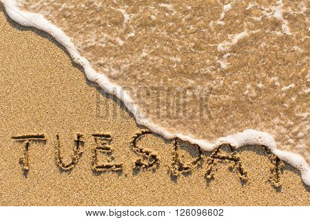 Tuesday - drawn of the hand on the beach sand, soft surf wave.