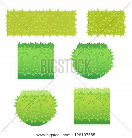 Bushes icons different colors. Vector green Grass