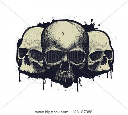Black and white human skull. Hand drawn. Jpeg version.