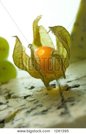 Physalis & Blue Cheese