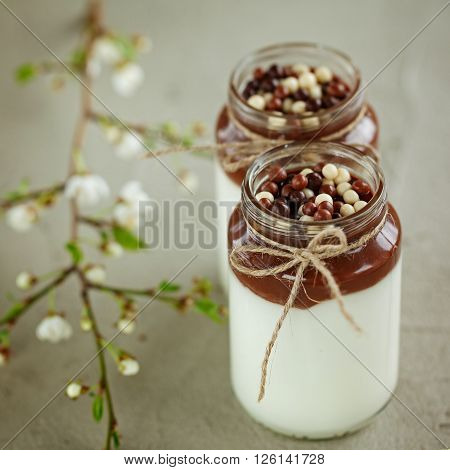 Glass of Homemade yogurt with chocolate mousse and  chocolate candy drops with spring branch