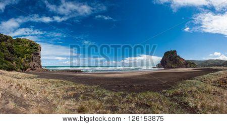 Beautiful Piha beach near Auckland with a mighty Lion Rock, New Zealand. Panoramic photo