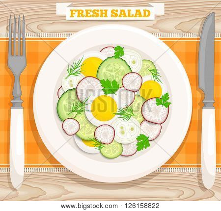 Vector illustration of a fresh salad with egg radish cucumber onion parsley dill. Salad top view.