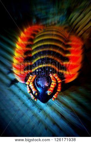 Arthropleura - a large wild prehistoric extinct giant Centipede