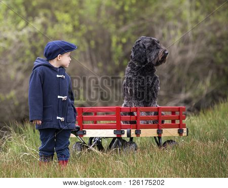 small boy with his large wooden red wagon and his large black poodle dog riding in it.