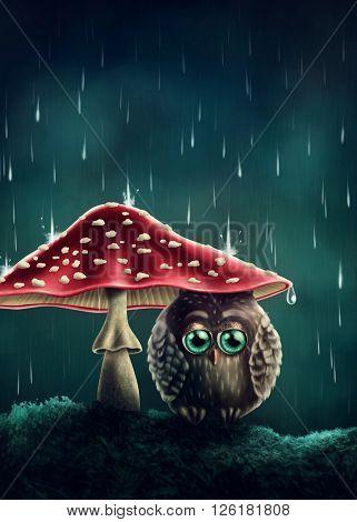 Little owl sitting under mushrooms