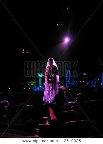 The Moira Orfei Circus - musician