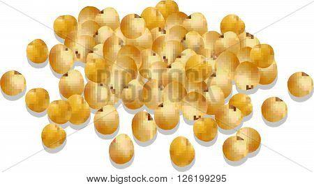 millet cereal. millet vector illustration.  organic millet seeds
