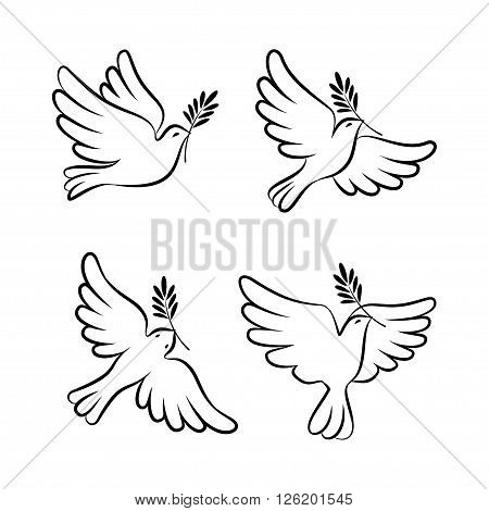 Flying dove vector sketch set. Dove of Peace. Silhouette of a flying dove with olive branch. White dove bird dove white pigeon doodle collection. Vector illustration
