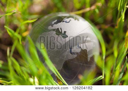 Crystal Glass Globe In Green Grass